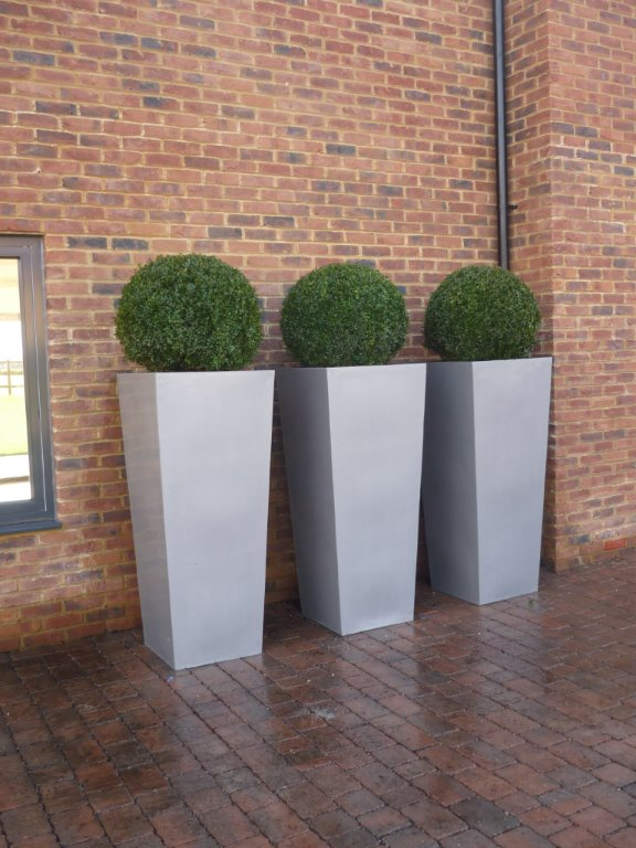Large planters and box spheres show home Chorleywood
