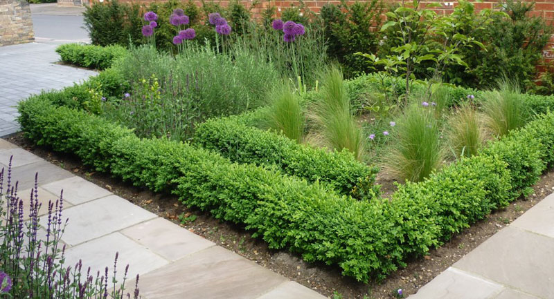 Demeter Design | Landscape Designer Cambridge and Norfolk