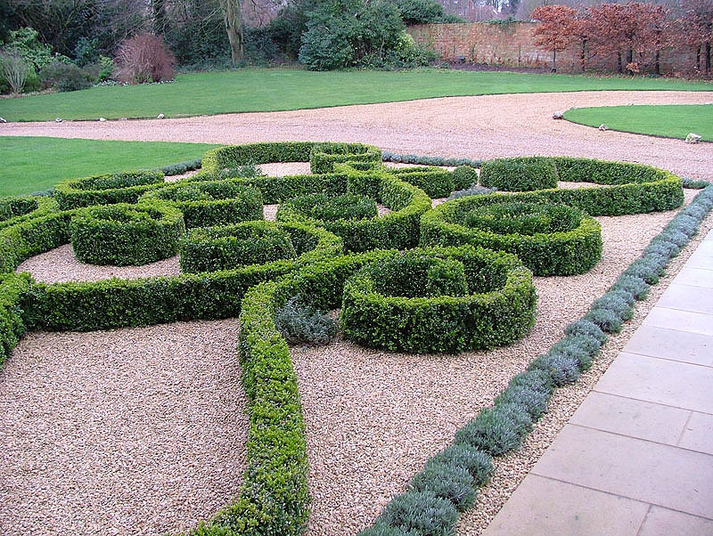 Topiary box hedging