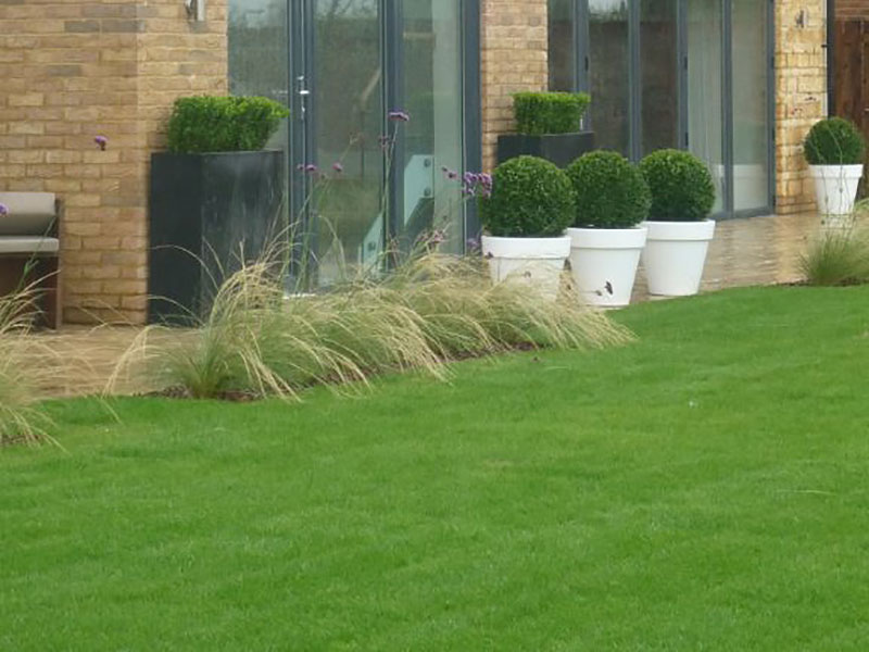Show home, London. Grasses, pots and planters.