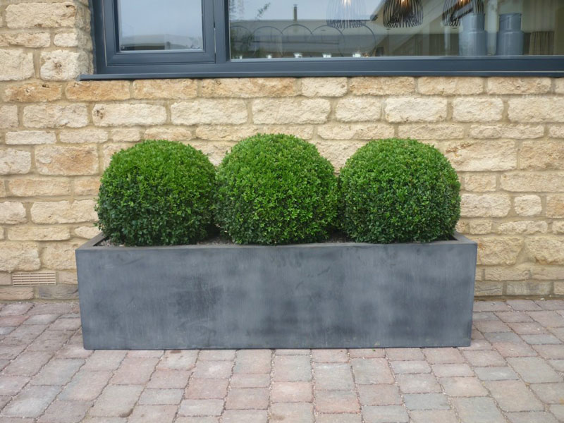 Show home London - faux lead planter & topiary box spheres