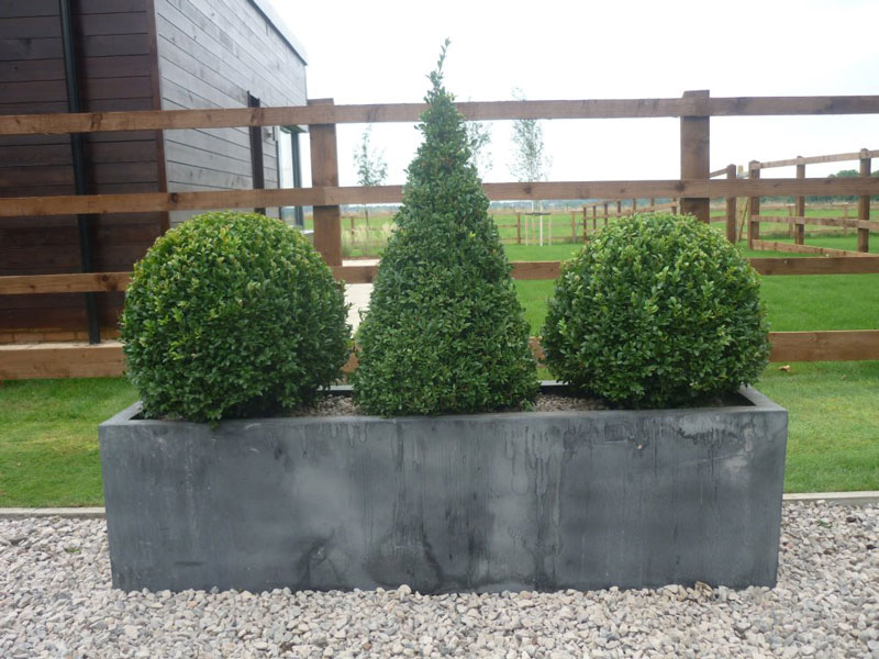 Show home, London - Faux lead planters & topiary box.
